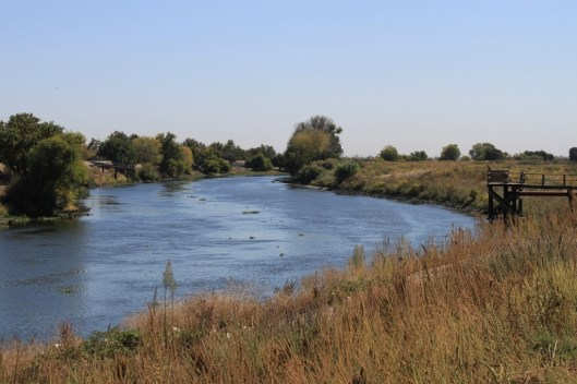 San-Joaquin-River-south-Delta-Oct-2013-2